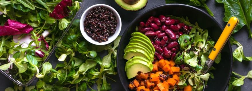 Vegetarianismo en el Seguro de salud 3